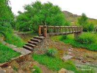 puente-2